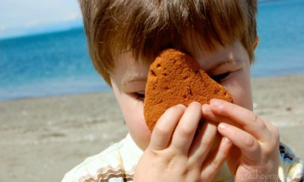 Searching for Safer Sunscreens