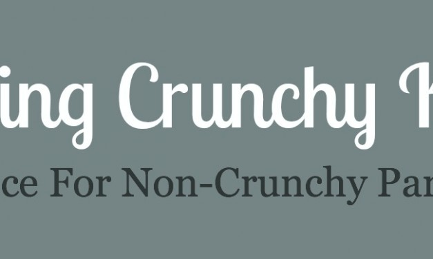 Loving Crunchy Kids, Advice for Non-Crunchy Parents – Part 2