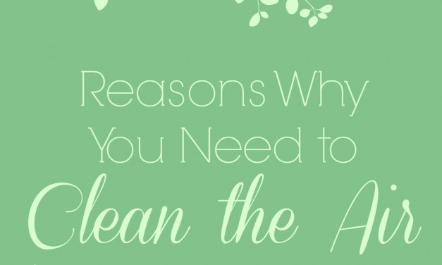 Reasons Why You Need to Clean the Air in Your Home