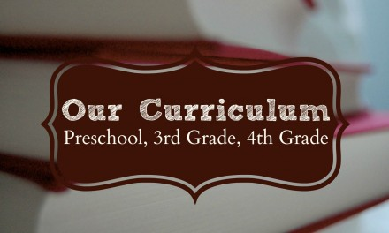 Our Curriculum 2015-2016