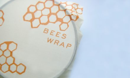 An Alternative to Plastic Wrap + The World's Best Subscription Service