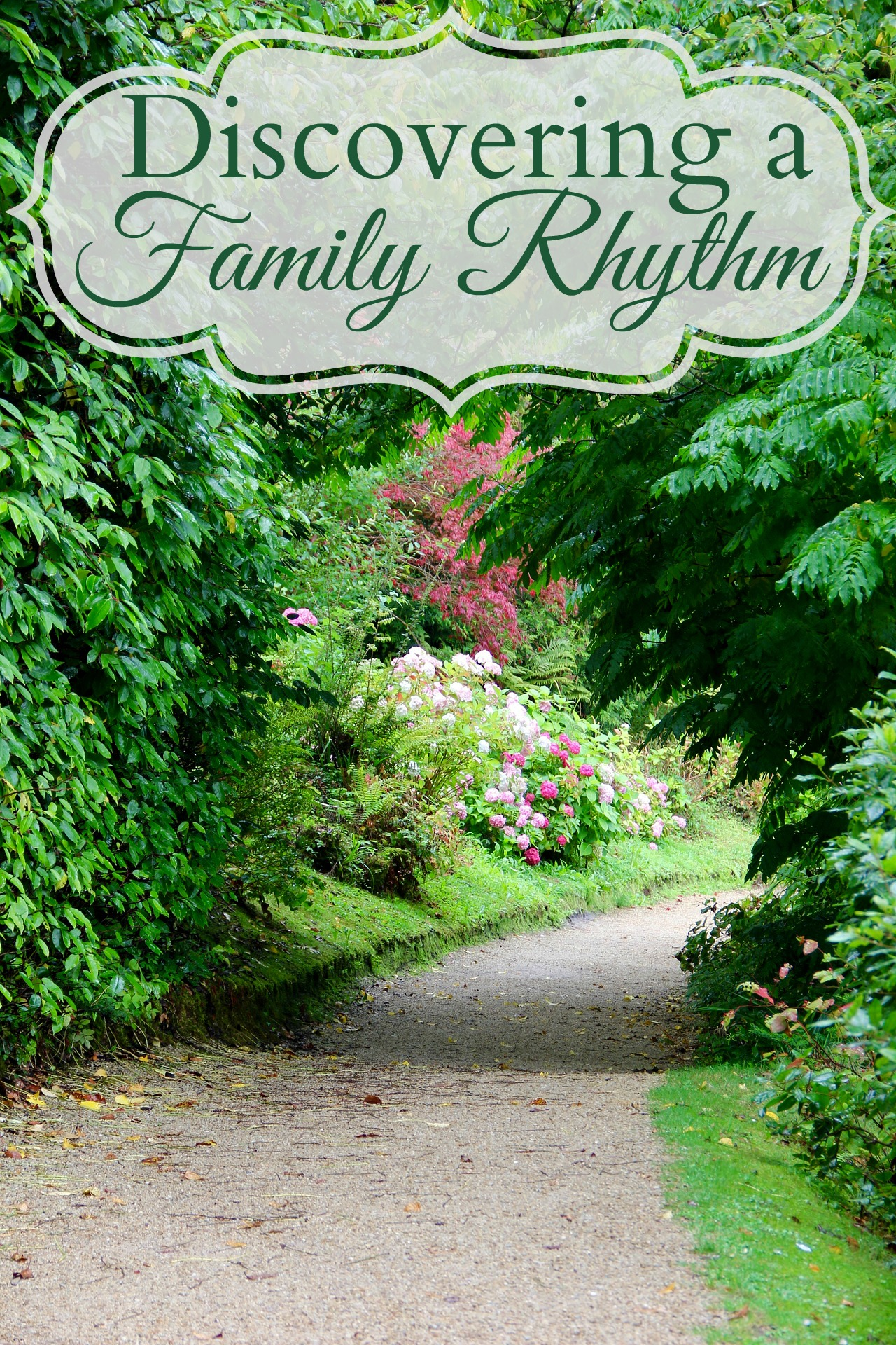 Discovering a Family Rhythm - Rhythm is very different from a schedule – rhythm supports our physical, emotional, and spiritual needs. Schedules dictate. Rhythms flow and breath, schedules are tight and strict.