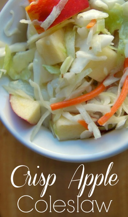 Crisp Apple Coleslaw - This recipe is such a simple one. It requires few ingredients and they are all healthy so you can feel great about eating this coleslaw! Juicy apples, hints of celery seed, and crisp cabbage… lovely.
