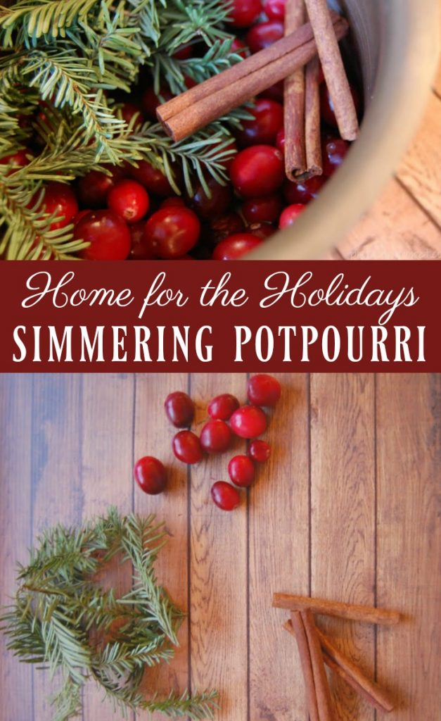 Home for the Holidays Simmering Potpourri - Perhaps your home is lacking that holiday smell or perhaps you just want a way to make your home smell wonderful without the use of fake fragrances and toxic chemicals. I have the perfect solution for you; a simmering potpourri that will indeed take you home for the holidays!