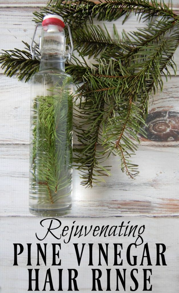Start hunting down those pine needles! This rejuvenating pine vinegar hair rinse will be your new favorite way to condition your hair! Great for dandruff, eczema, psoriasis, and adding shine to hair.