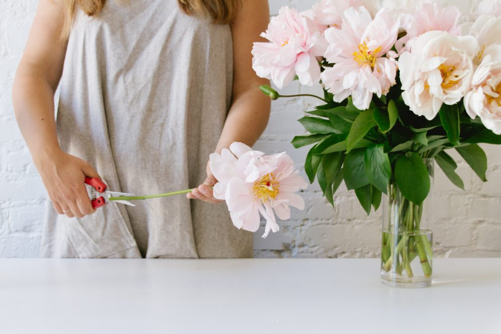 Flower prep tips: Retrim stems before placing them directly in your vase for arranging.