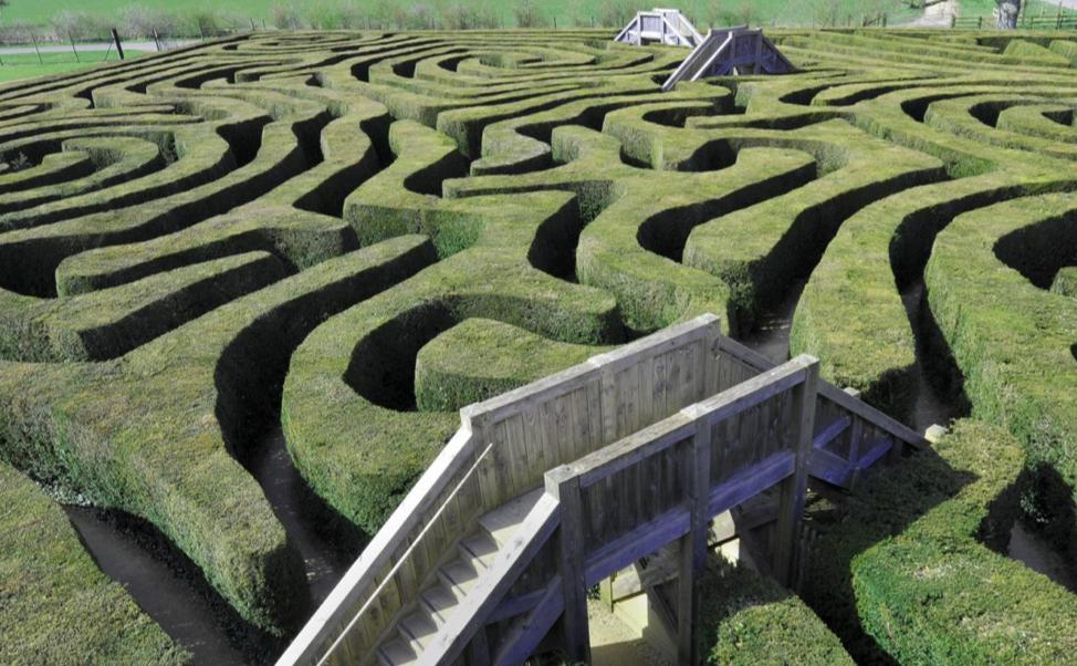 Bridges in a maze